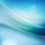 网络营销新宠——微博营销