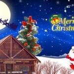 文军营销2015圣诞Party