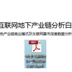 中国互联网地下产业链分析白皮书 下载